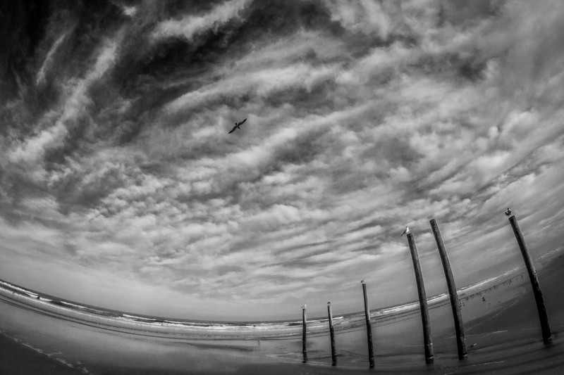 Daytona Beach Landscape | Limited Addition Fine Art Photography