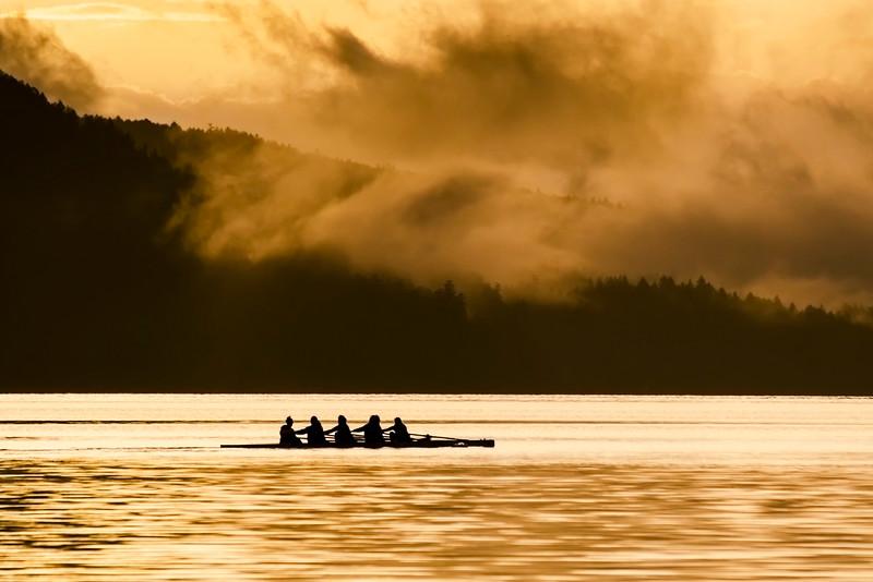 Rowing In Maple Bay II