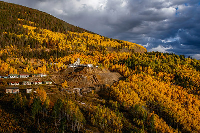 Ghost Town Aspens
