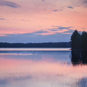 Twilight at the lake