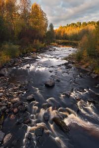 Autumn moments in Karelia