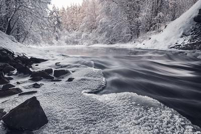 Winter wonders. Frozen kingdom