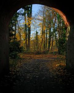 Autumn Bridge Newbury