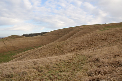 Uffington - Spot the horse