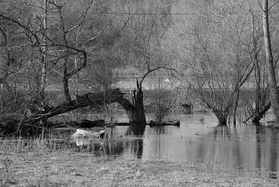 Northcroft Flood January 14 2014