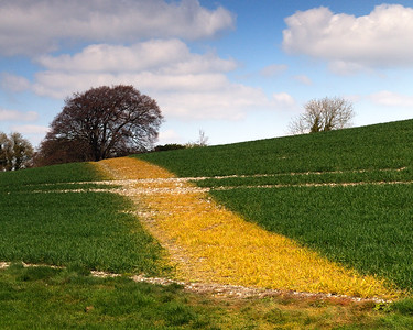 another view near Combe