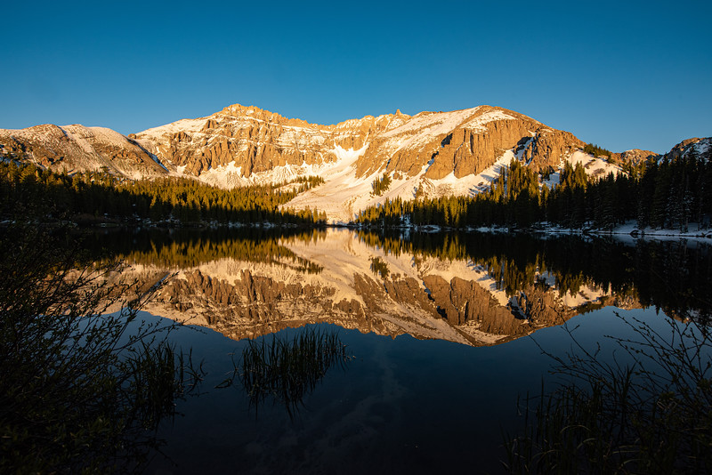 Alta Reflection