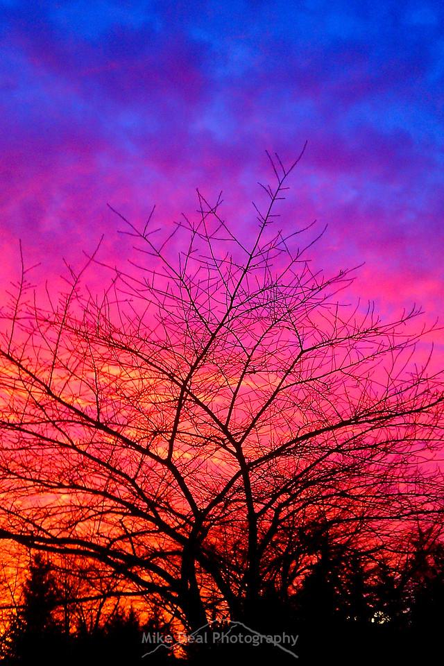 Sunset at OTC