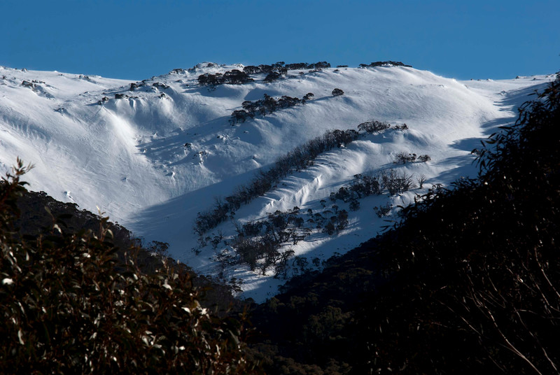 Main Range Ridge, Snowy Mountains (The bluff that marks the edge of the Kosciusko Main Range)