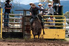 Jindabyne Rodeo, Boxing Day 2011