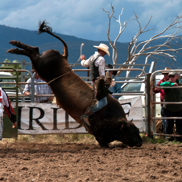 Jindabyne Rodeo, Boxing Day, 2011