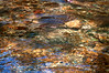 Leatherbarrel Creek, Colour Kaleidoscope