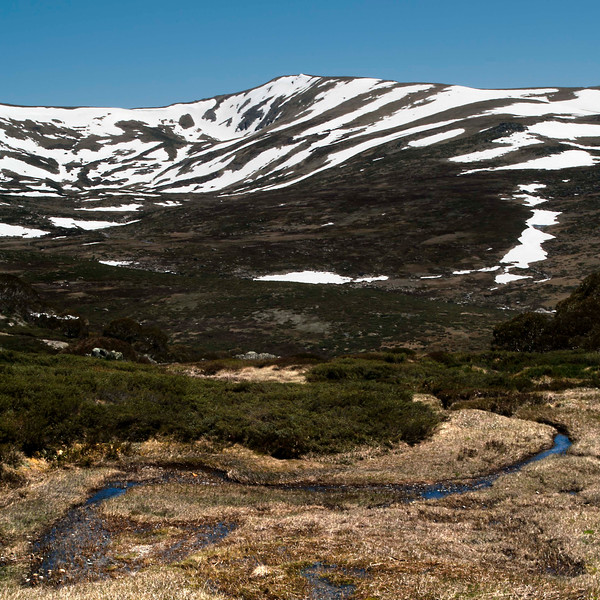 Snow-melt, feeding into the Snowy River