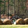 Hidden Behind Hay