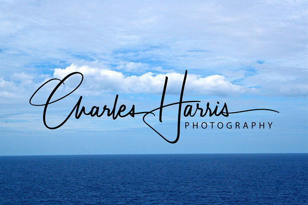 """See more photographs by visiting <a href=""""http://charlesharrisphotography.smugmug.com"""">http://charlesharrisphotography.smugmug.com</a><br /> ©Charles Harris Photography"""