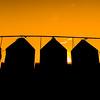 Grain Bins Sunrise
