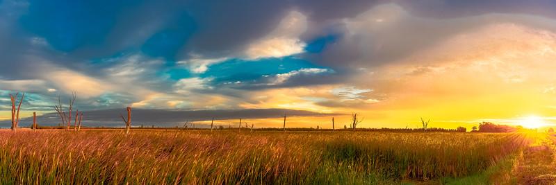 Marsh Sunrise 1.3