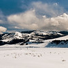 Lamar valley panorama