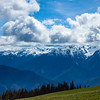 Hurricane Ridge Grandeur
