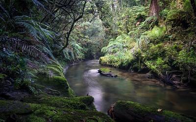 Tawarau River