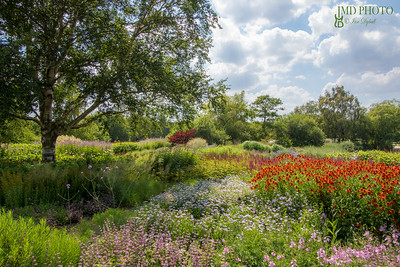 Summer country garden landscape. Beautiful colorful horticulture scene with flowers