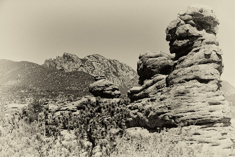 An Apache warrior's silhouetted face looking skyward naturally formed by the mountain can still be seen watching over the Chiricahua's.  His face is over 3 miles long.