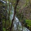 Amicalola Falls -8507