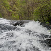 Amicalola Falls -8442