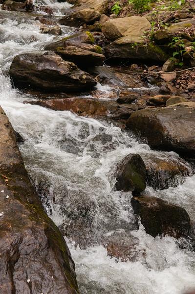 Amicalola Falls -8605