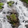 Amicalola Falls -8537