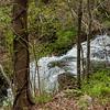Amicalola Falls -8466