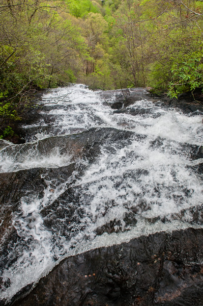 Amicalola Falls -8427