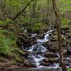 Amicalola Falls -8614
