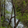 Amicalola Falls -8498