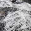 Amicalola Falls -8441