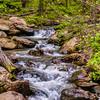 Amicalola Falls -8609