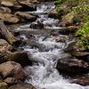 Amicalola Falls -8602