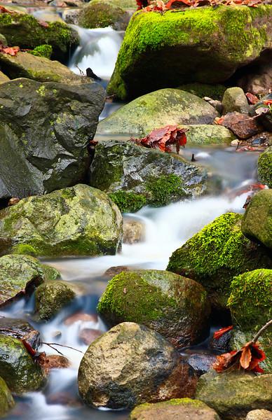 """Apátkúti-patak, Visegrád. <a href=""""http://www.mayermiklos.com/Landscapes-1/Apatkuti-Sztaravoda/10842014_8SQHz"""">Még több kép</a>"""