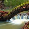 """Sztaravoda-patak. <a href=""""http://www.mayermiklos.com/Landscapes-1/Apatkuti-Sztaravoda/10842014_8SQHz"""">Még több kép</a>"""