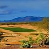 Saddlebrooke Ranch Golf Course