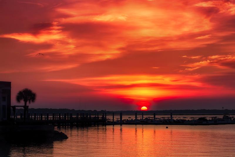 The Summer Sunrise