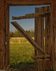 View from the Past (Part of a Tobacco Barn Project in the works)