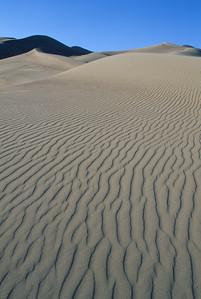 Great Sand Dunes 7448