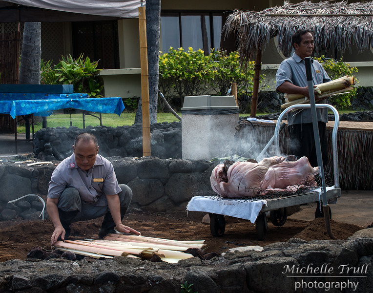 Getting a pig ready for a luau