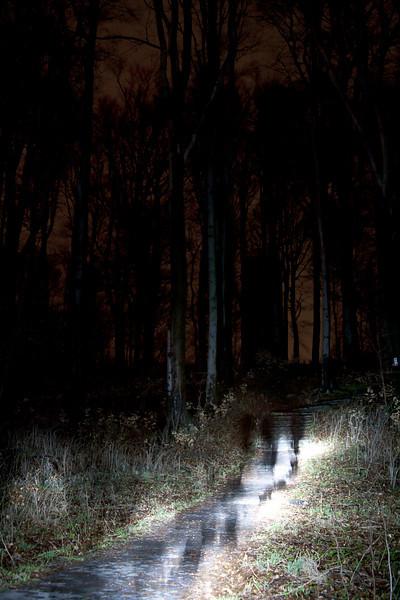 Kinetikus kollégák az erdőben...