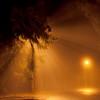 """Galyatető ködben. <a href=""""http://www.mayermiklos.com/Landscapes-1/Galyateto/12279133_THujw"""">Még több kép</a>"""