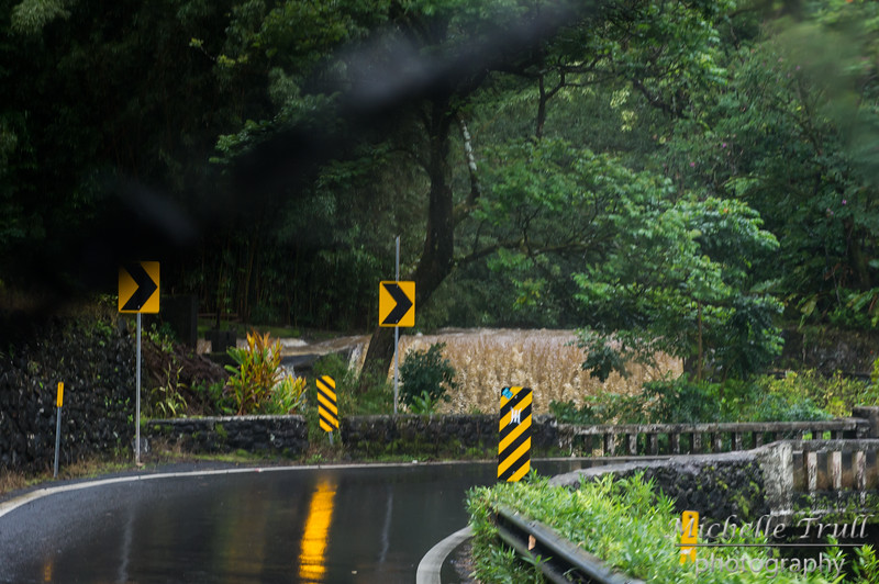 This waterfall was barely noticeable on our way out to Hana; could not miss it on our way back!
