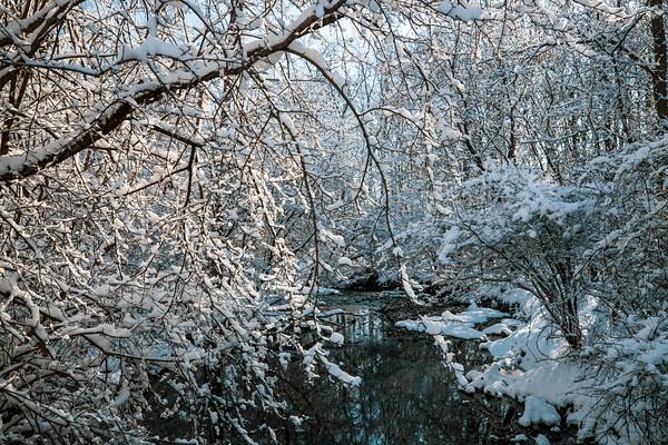 snow-5250