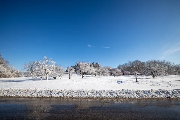snow-5235