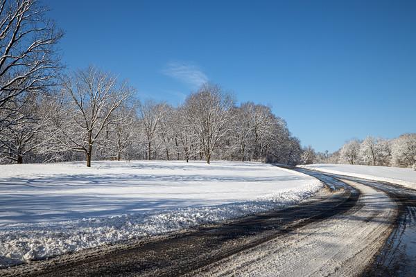 snow-5263